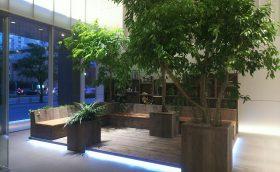 プライムセントラルタワーホールの緑化