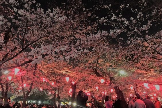 春の親睦会