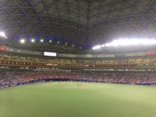 【野球観戦】